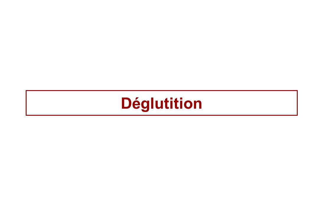 Déglutition