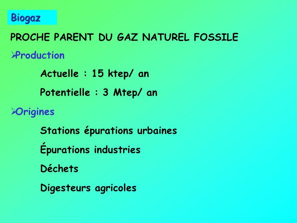 Biomasse Trois filières Chimiques Chimiques Hydrolyse : éthanol Liquéfaction : carburants Biologiques : micro-organismes Biologiques : micro-organisme