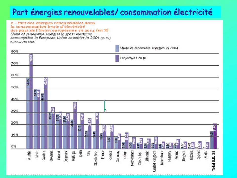 Production énergie primaire dorigine renouvelable