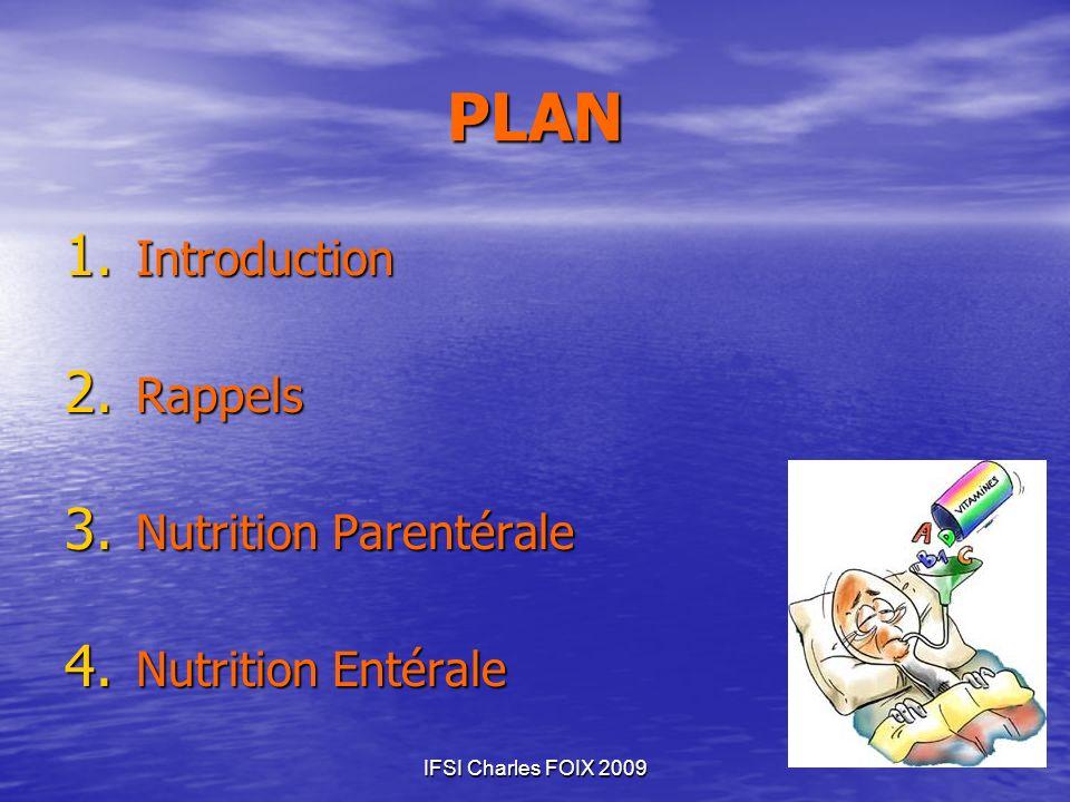 IFSI Charles FOIX 2009 PLAN 1. Introduction 2. Rappels 3. Nutrition Parentérale 4. Nutrition Entérale