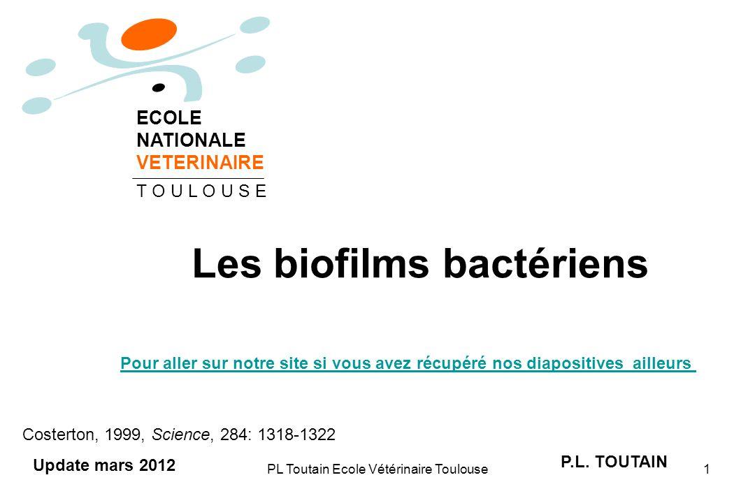 PL Toutain Ecole Vétérinaire Toulouse2 Définition dun biofilm Un biofilm est une communauté de microorganismes (bactéries, champignons etc.) adhérant entre eux, fixée à une surface ( bactéries dites sessiles), et caractérisée par la sécrétion d une matrice adhésive et protectrice.