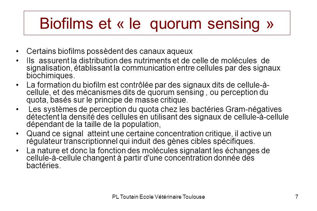 PL Toutain Ecole Vétérinaire Toulouse18 Biofilm bactérien & risque infectieux De plus en plus dinfections, notamment chez les sujets débilités, sont dues à des bactéries commensales du corps ou de lenvironnement – ces bactéries forment des biofilms