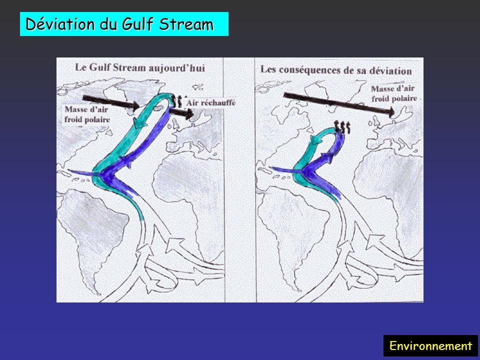 Environnement Augmentation des vagues de chaleur, périodes sèches Recrudescence de maladies infectieuses (paludisme, fièvre jaune, encéphalites virale