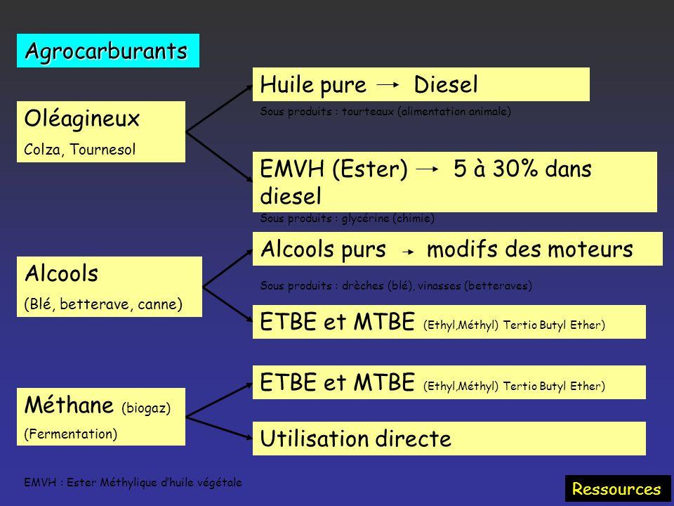 Biomasse Trois filières Chimiques Hydrolyse : éthanol Liquéfaction : carburants Biologiques : micro-organismes Production directe méthane, éthanol Fer