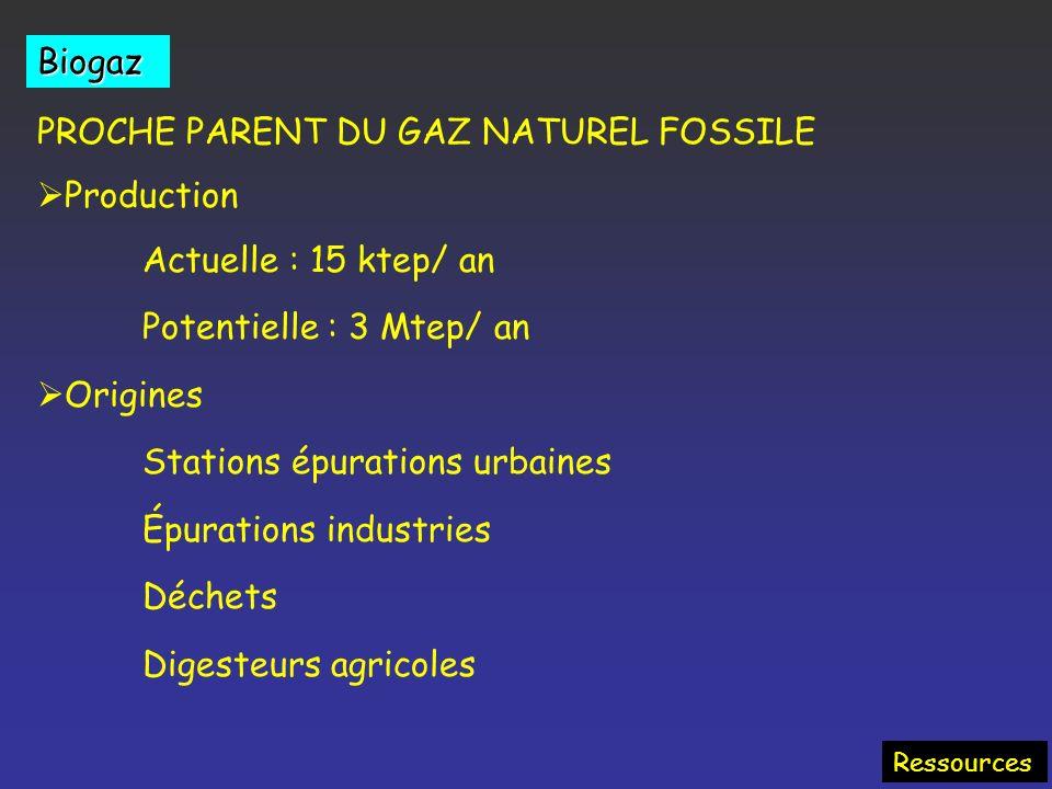 Agrocarburants Oléagineux Colza, Tournesol Alcools (Blé, betterave, canne) Méthane (biogaz) (Fermentation) Huile pure Diesel EMVH (Ester) 5 à 30% dans
