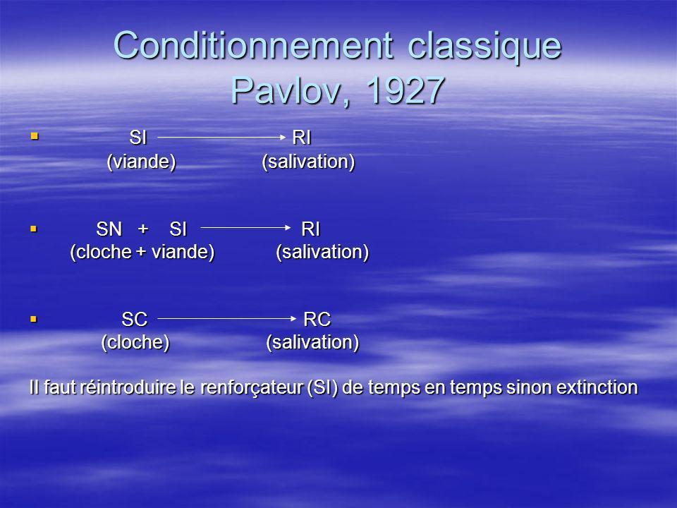 Conditionnement classique Pavlov, 1927 SI RI SI RI (viande) (salivation) (viande) (salivation) SN + SI RI SN + SI RI (cloche + viande) (salivation) (c
