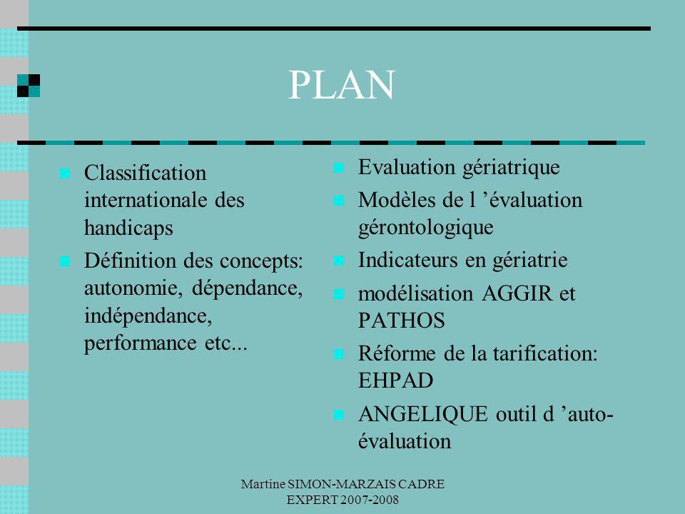 Martine SIMON-MARZAIS CADRE EXPERT 2007-2008 PLAN Classification internationale des handicaps Définition des concepts: autonomie, dépendance, indépend