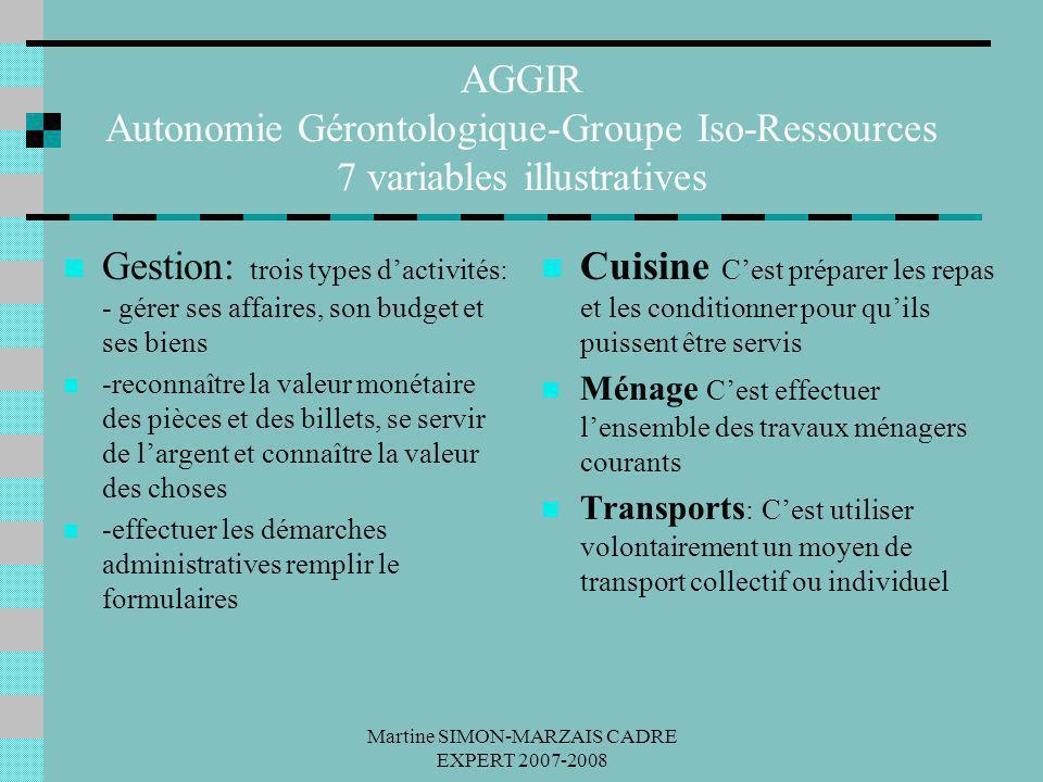 Martine SIMON-MARZAIS CADRE EXPERT 2007-2008 AGGIR Autonomie Gérontologique-Groupe Iso-Ressources 7 variables illustratives Gestion: trois types dacti