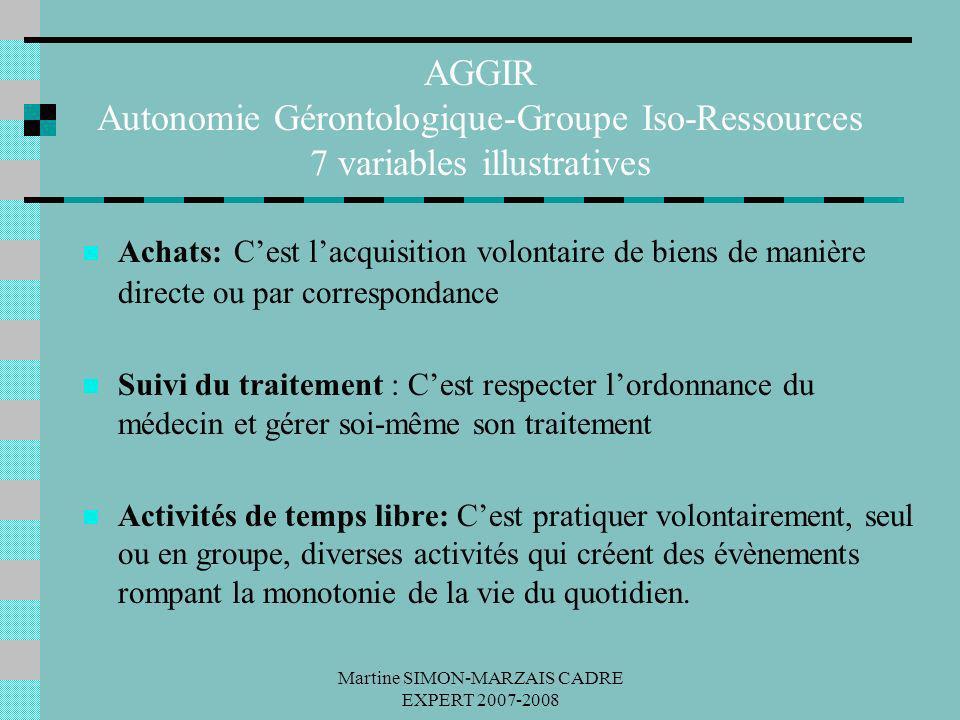 Martine SIMON-MARZAIS CADRE EXPERT 2007-2008 AGGIR Autonomie Gérontologique-Groupe Iso-Ressources 7 variables illustratives Achats: Cest lacquisition