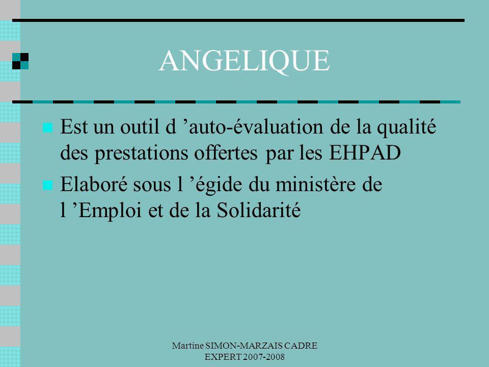 Martine SIMON-MARZAIS CADRE EXPERT 2007-2008 ANGELIQUE Est un outil d auto-évaluation de la qualité des prestations offertes par les EHPAD Elaboré sou