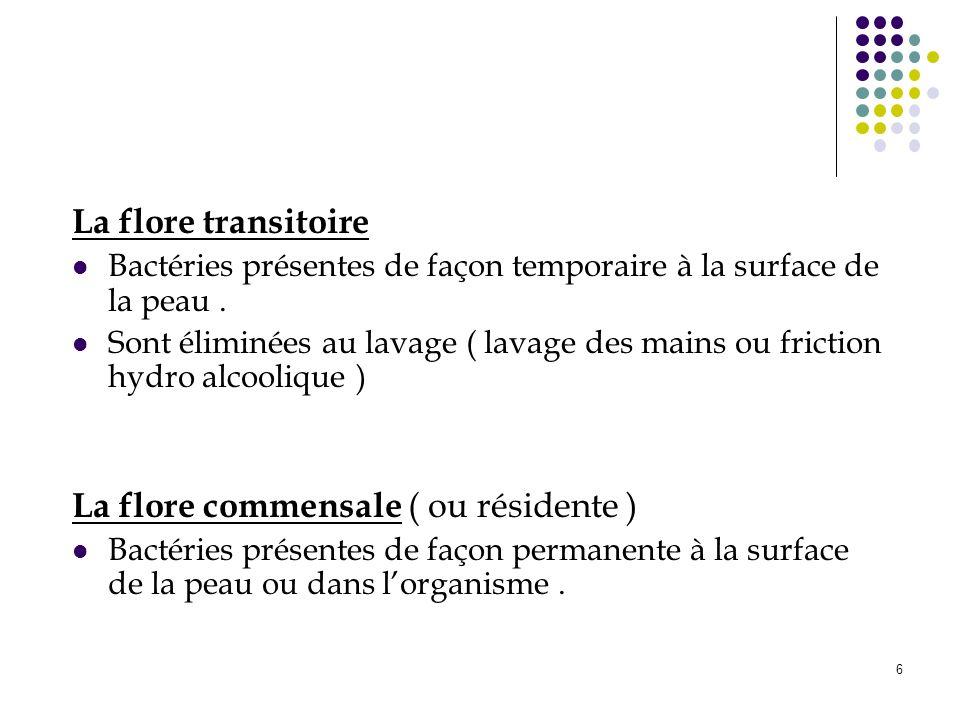 6 La flore transitoire Bactéries présentes de façon temporaire à la surface de la peau. Sont éliminées au lavage ( lavage des mains ou friction hydro