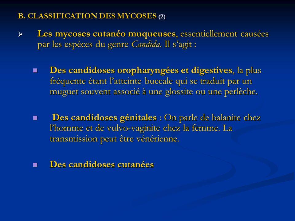 B. CLASSIFICATION DES MYCOSES (2) Les mycoses cutanéo muqueuses, essentiellement causées par les espèces du genre Candida. Il sagit : Les mycoses cuta