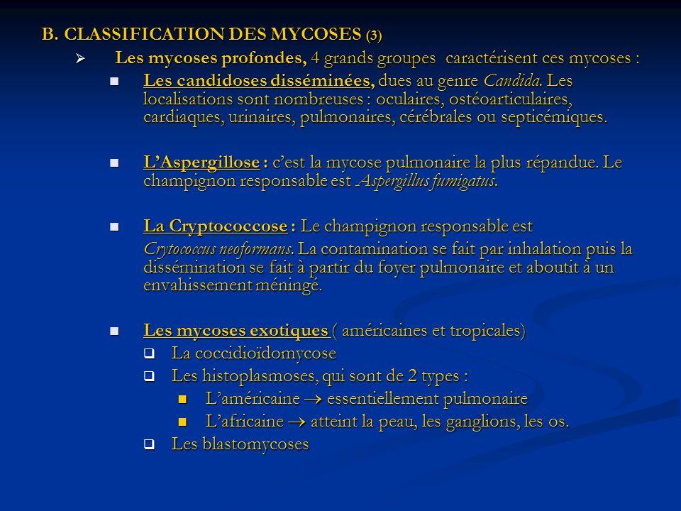 B. CLASSIFICATION DES MYCOSES (3) Les mycoses profondes, 4 grands groupes caractérisent ces mycoses : Les mycoses profondes, 4 grands groupes caractér