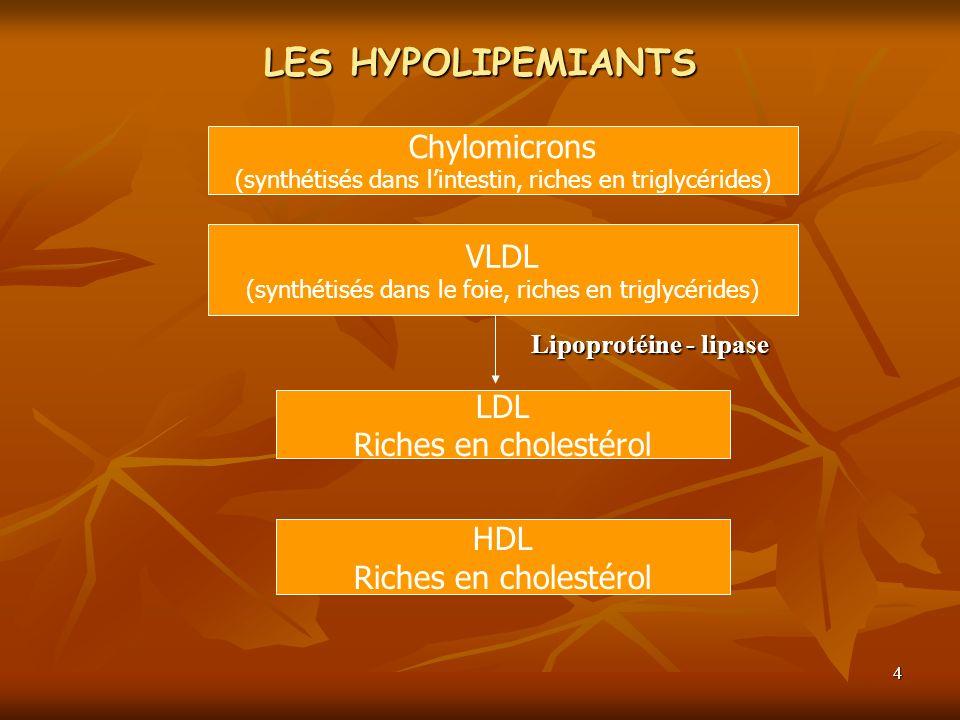 4 LES HYPOLIPEMIANTS Lipoprotéine - lipase Chylomicrons (synthétisés dans lintestin, riches en triglycérides) VLDL (synthétisés dans le foie, riches e