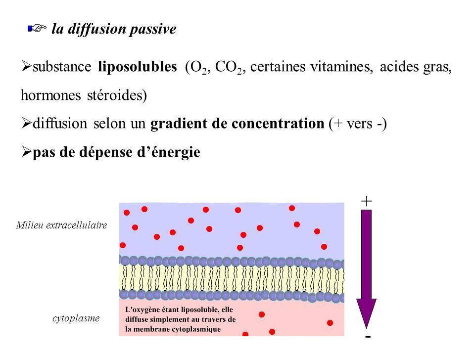 a.Transport passif i.La diffusion solvant : liquide dans lequel sont dissoutes des particules appelées solutés dans un solvant, les solutés se déplace