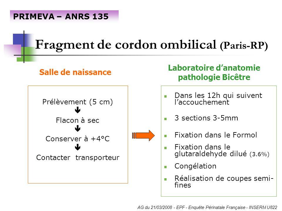 Fragment de cordon ombilical (Paris-RP) Prélèvement (5 cm) Flacon à sec Conserver à +4°C Contacter transporteur Dans les 12h qui suivent laccouchement