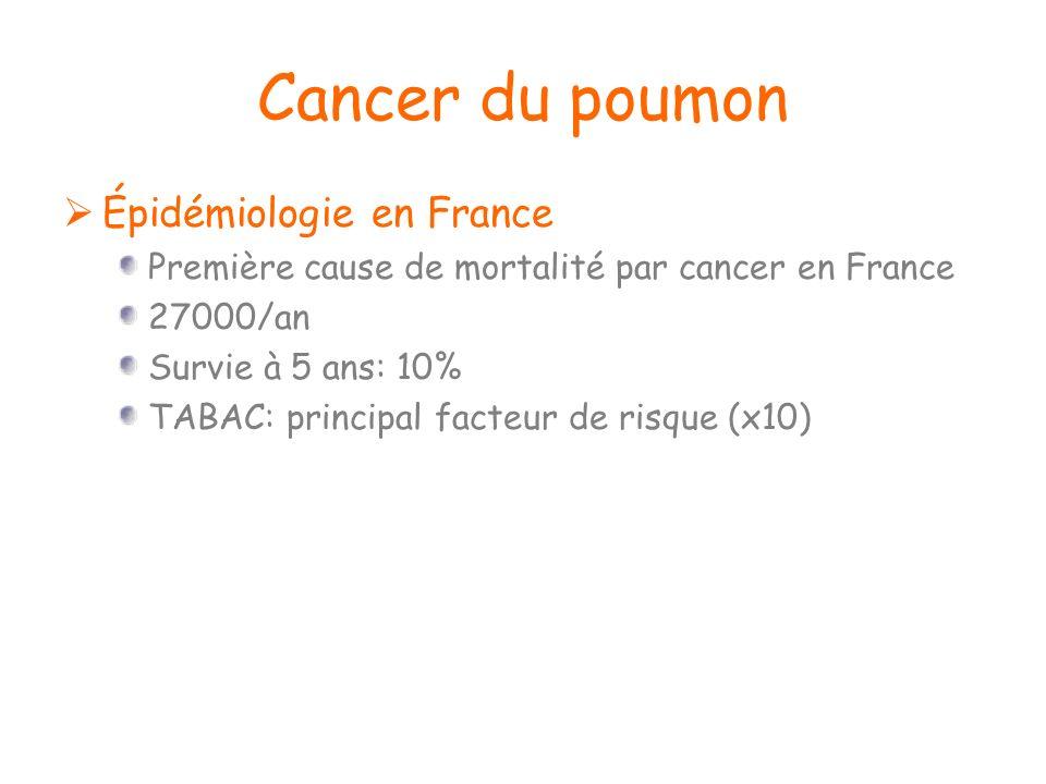 Cancer du poumon Épidémiologie en France Première cause de mortalité par cancer en France 27000/an Survie à 5 ans: 10% TABAC: principal facteur de ris