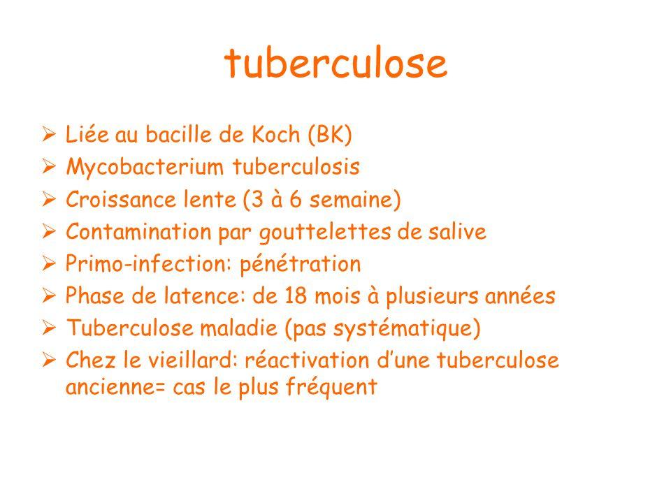 Liée au bacille de Koch (BK) Mycobacterium tuberculosis Croissance lente (3 à 6 semaine) Contamination par gouttelettes de salive Primo-infection: pén