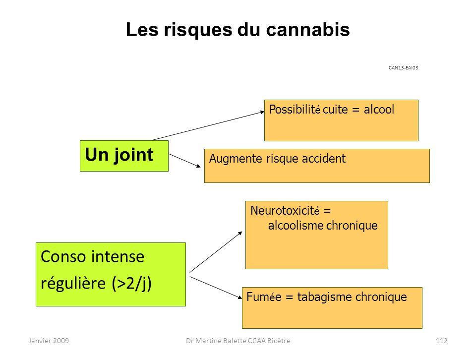 Janvier 2009Dr Martine Balette CCAA Bicêtre112 Les risques du cannabis CAN13-EAI03 Conso intense régulière (>2/j) Possibilit é cuite = alcool Augmente