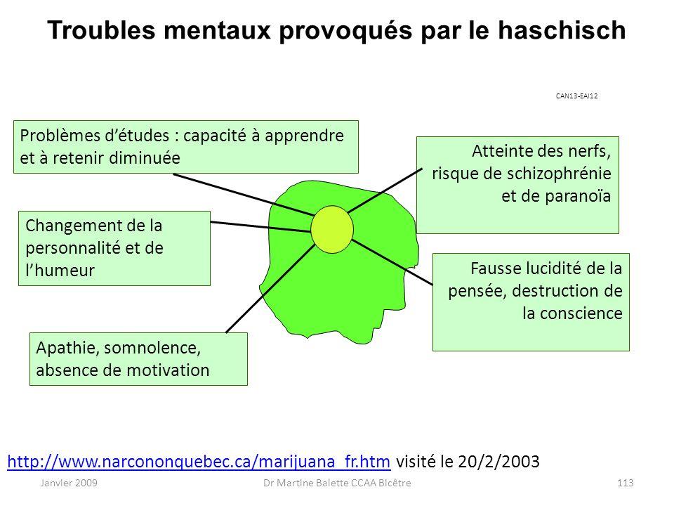 Janvier 2009Dr Martine Balette CCAA Bicêtre113 Troubles mentaux provoqués par le haschisch http://www.narcononquebec.ca/marijuana_fr.htmhttp://www.nar