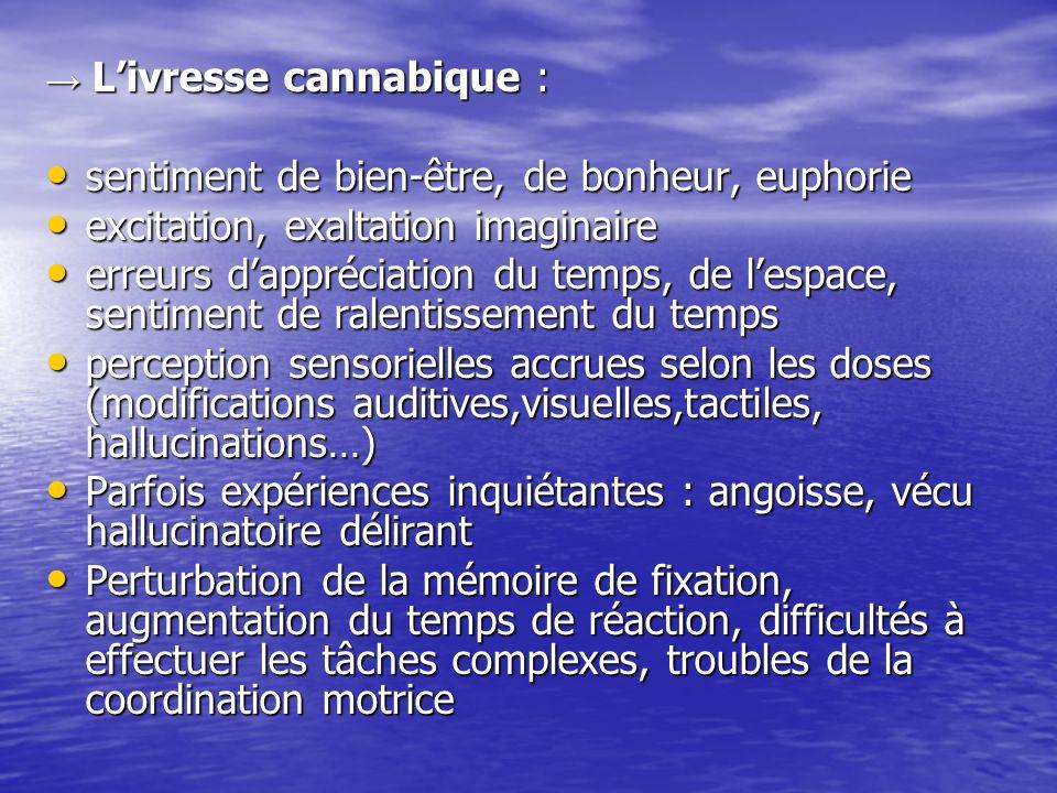 Livresse cannabique : Livresse cannabique : sentiment de bien-être, de bonheur, euphorie sentiment de bien-être, de bonheur, euphorie excitation, exal