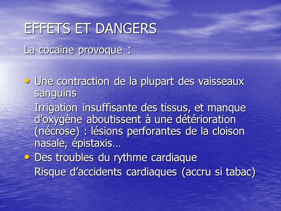 EFFETS ET DANGERS La cocaïne provoque : Une contraction de la plupart des vaisseaux sanguins Une contraction de la plupart des vaisseaux sanguins Irri