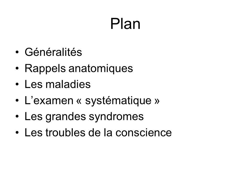 Plan Généralités Rappels anatomiques Les maladies Lexamen « systématique » Les grandes syndromes Les troubles de la conscience