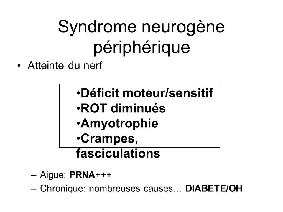 Syndrome neurogène périphérique Déficit moteur/sensitif ROT diminués Amyotrophie Crampes, fasciculations Atteinte du nerf –Aigue: PRNA+++ –Chronique: