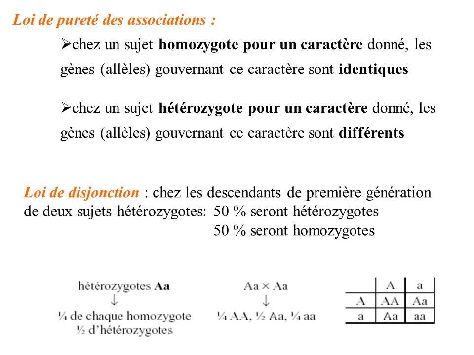 Loi de pureté des associations : chez un sujet homozygote pour un caractère donné, les gènes (allèles) gouvernant ce caractère sont identiques chez un