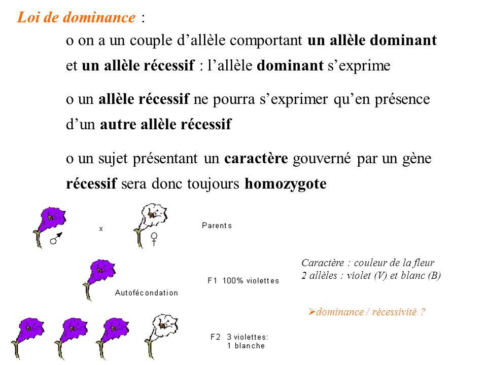 Loi de dominance : o on a un couple dallèle comportant un allèle dominant et un allèle récessif : lallèle dominant sexprime o un allèle récessif ne po