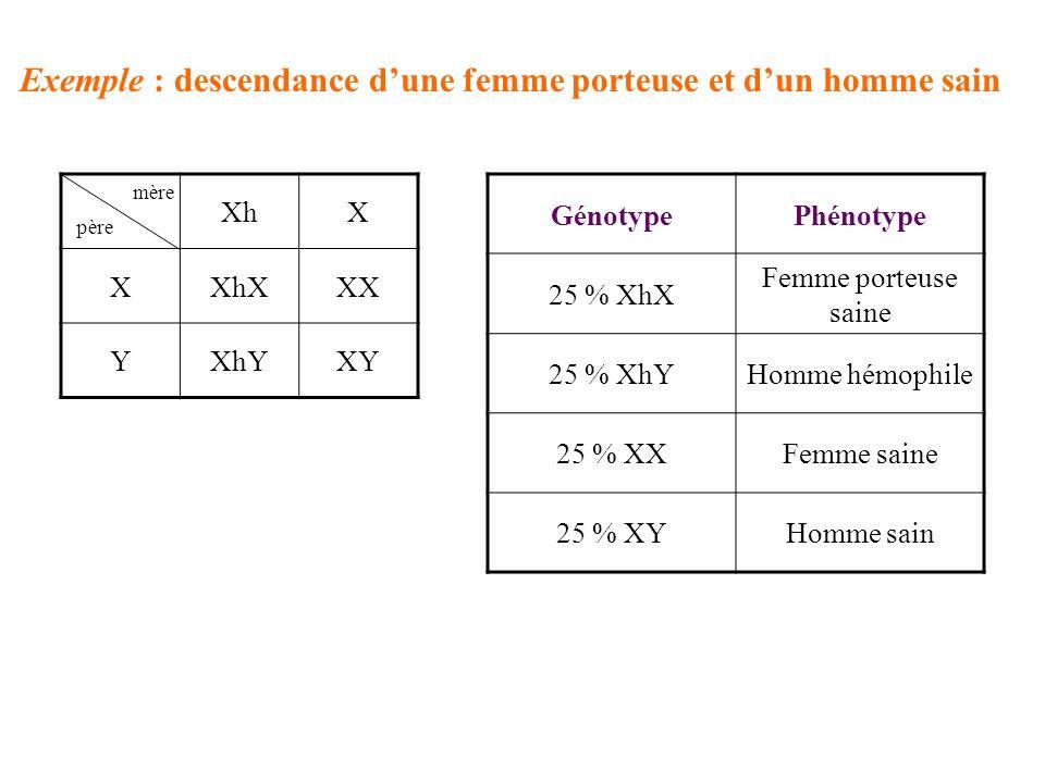 Exemple : descendance dune femme porteuse et dun homme sain XhX XXhXXX YXhYXY mère père GénotypePhénotype 25 % XhX Femme porteuse saine 25 % XhYHomme