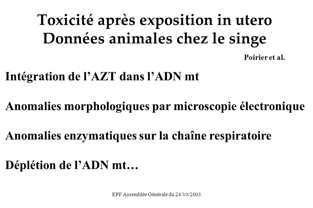 EPF Assemblée Générale du 24/10/2003 Toxicité après exposition in utero Données animales chez le singe Poirier et al.