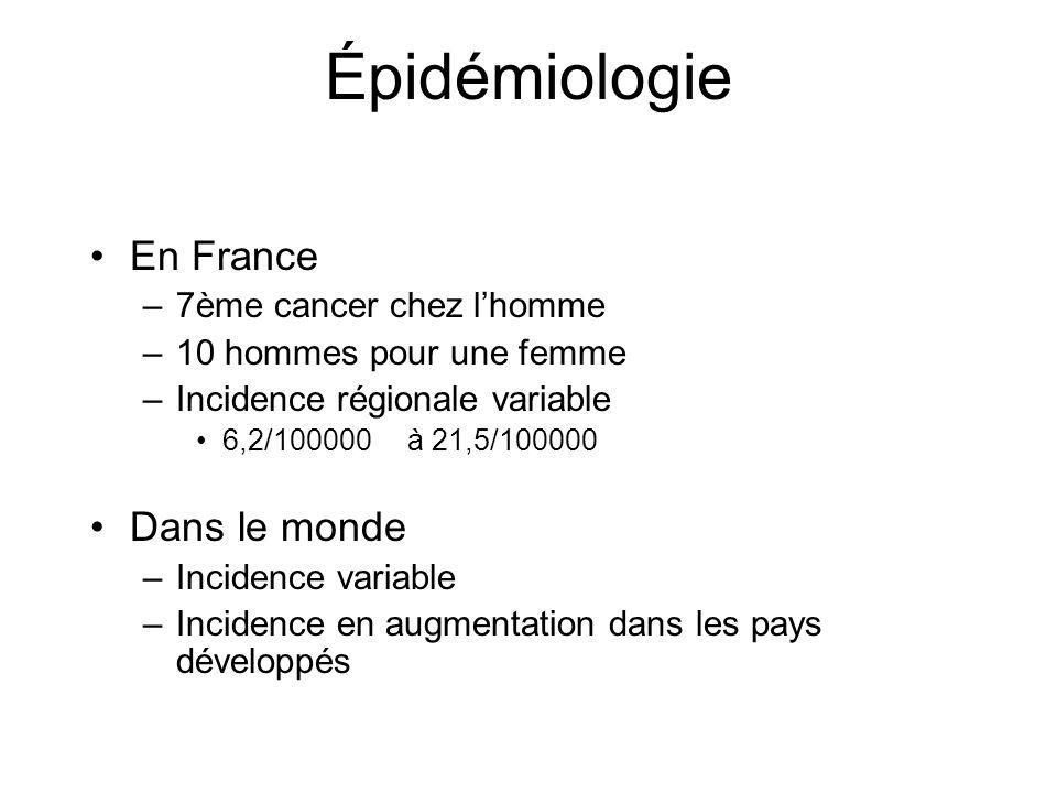 Épidémiologie En France –7ème cancer chez lhomme –10 hommes pour une femme –Incidence régionale variable 6,2/100000à 21,5/100000 Dans le monde –Incide