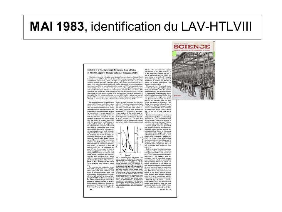 MAI 1983, identification du LAV-HTLVIII