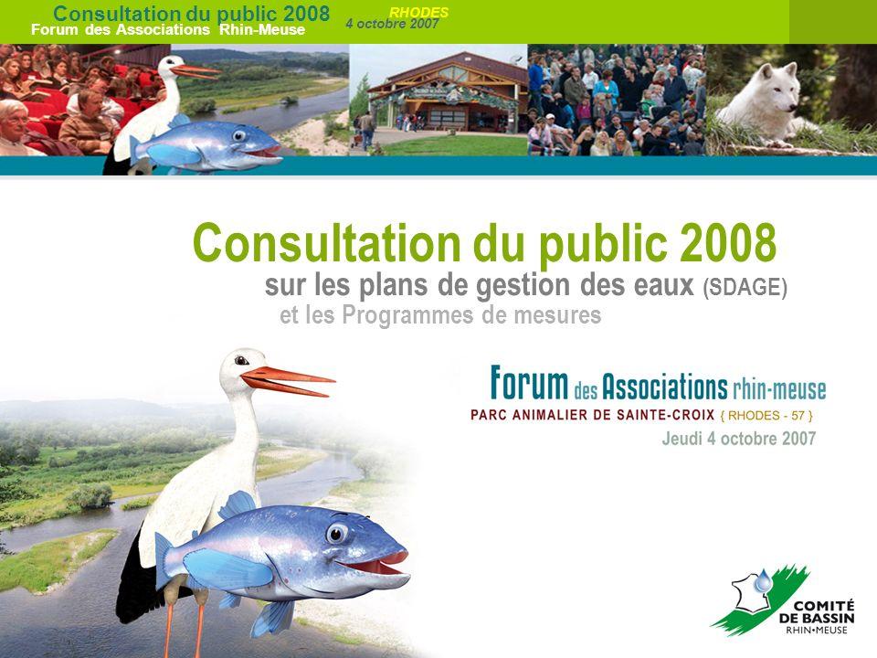 Consultation du public 2008 Forum des Associations Rhin-Meuse 4 octobre 2007 RHODES Consultation du public 2008 sur les plans de gestion des eaux (SDA