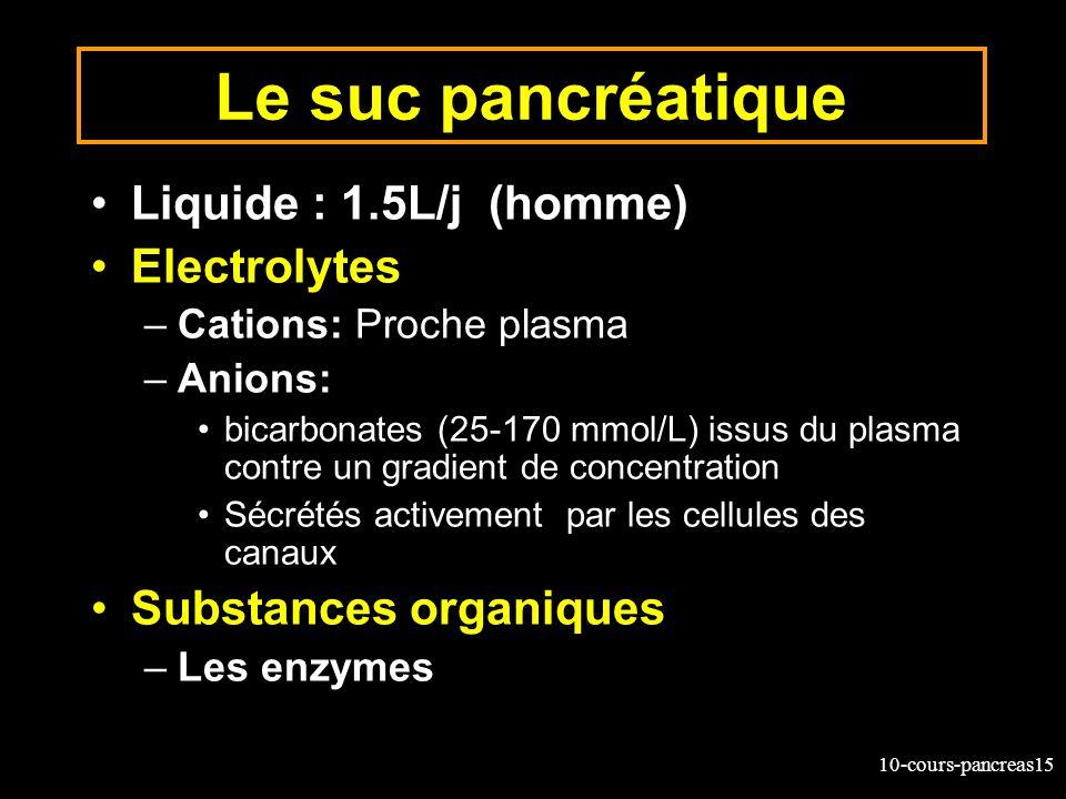 10-cours-pancreas15 Le suc pancréatique Liquide : 1.5L/j (homme) Electrolytes –Cations: Proche plasma –Anions: bicarbonates (25-170 mmol/L) issus du p
