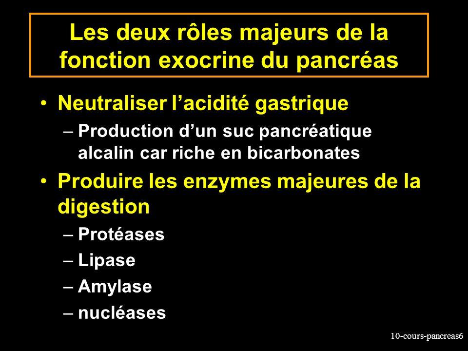 10-cours-pancreas6 Les deux rôles majeurs de la fonction exocrine du pancréas Neutraliser lacidité gastrique –Production dun suc pancréatique alcalin