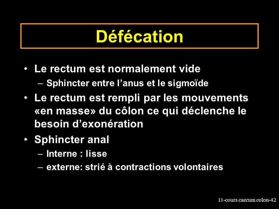 11-cours caecum colon-42 Défécation Le rectum est normalement vide –Sphincter entre lanus et le sigmoïde Le rectum est rempli par les mouvements «en m