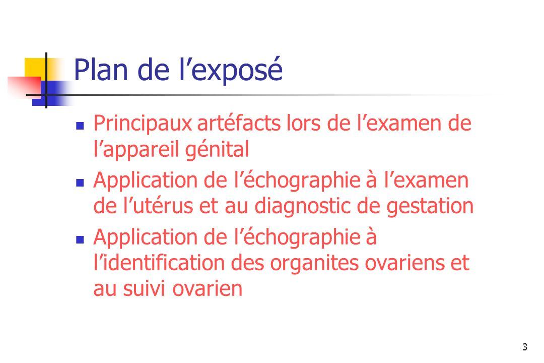 3 Plan de lexposé Principaux artéfacts lors de lexamen de lappareil génital Application de léchographie à lexamen de lutérus et au diagnostic de gesta