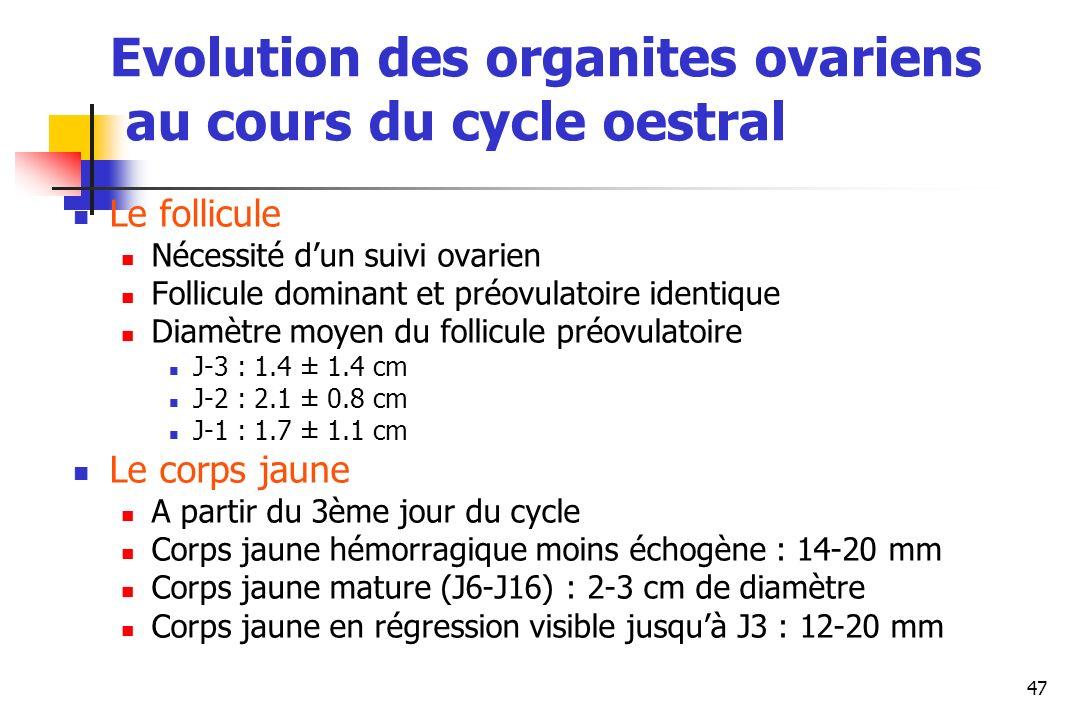 47 Evolution des organites ovariens au cours du cycle oestral Le follicule Nécessité dun suivi ovarien Follicule dominant et préovulatoire identique D