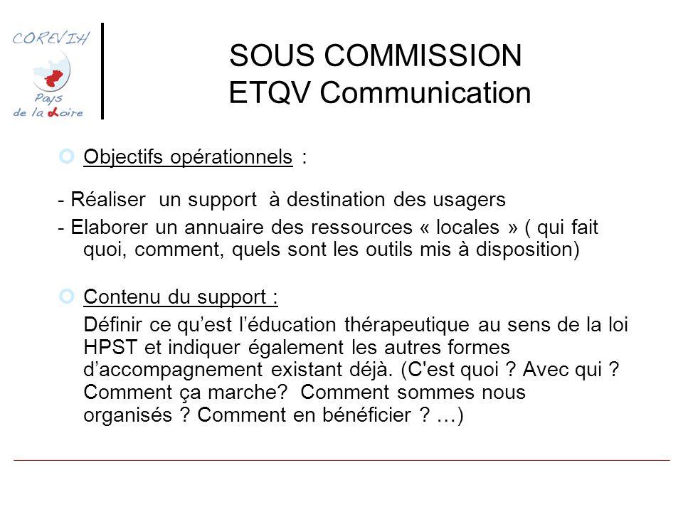 SOUS COMMISSION ETQV Communication Objectifs opérationnels : - Réaliser un support à destination des usagers - Elaborer un annuaire des ressources « l