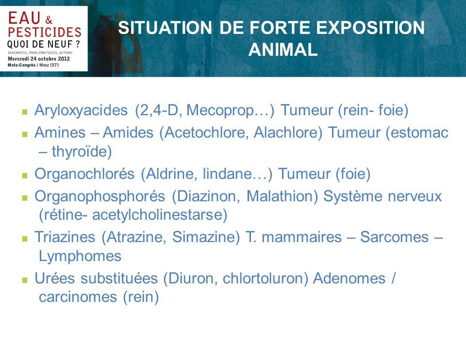 SITUATION DE FORTE EXPOSITION ANIMAL n Aryloxyacides (2,4-D, Mecoprop…) Tumeur (rein- foie) n Amines – Amides (Acetochlore, Alachlore) Tumeur (estomac