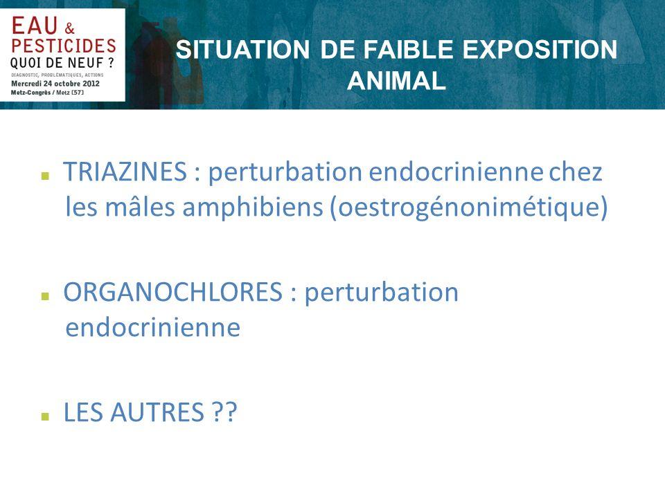 SITUATION DE FAIBLE EXPOSITION ANIMAL n TRIAZINES : perturbation endocrinienne chez les mâles amphibiens (oestrogénonimétique) n ORGANOCHLORES : pertu