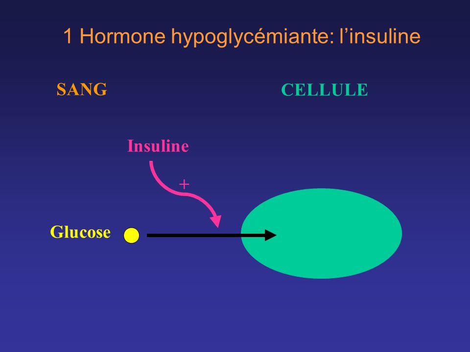 Glucose Insuline + SANG CELLULE 1 Hormone hypoglycémiante: linsuline