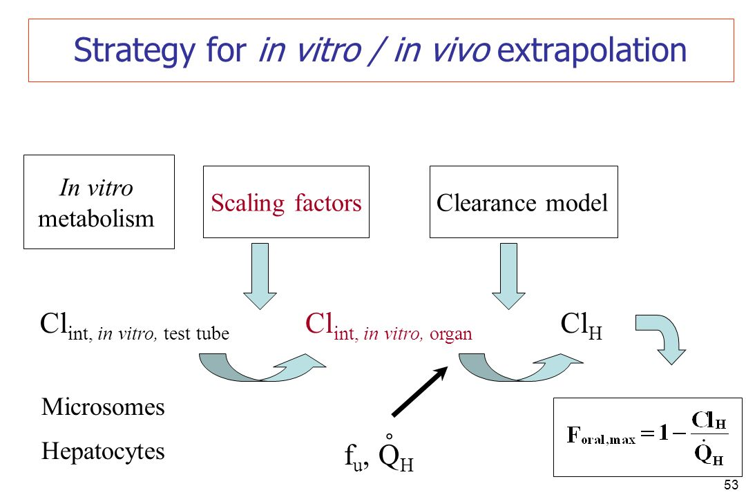 53 Strategy for in vitro / in vivo extrapolation Clearance model In vitro metabolism Cl int, in vitro, test tube Cl H Microsomes Hepatocytes f u, Q H