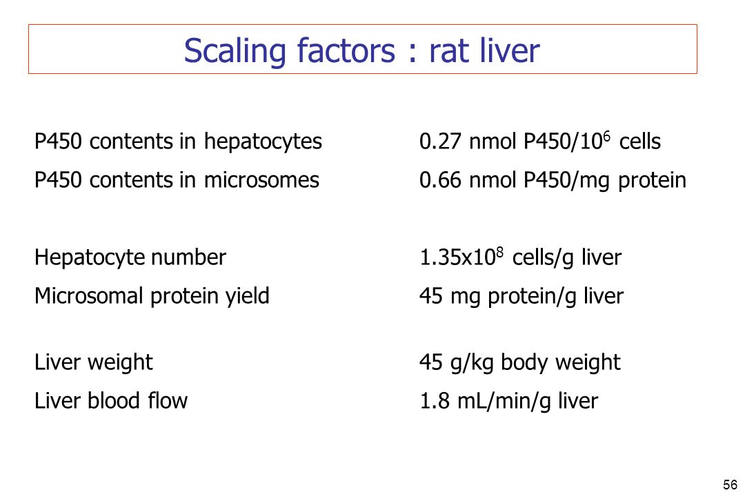 56 Scaling factors : rat liver P450 contents in hepatocytes P450 contents in microsomes Hepatocyte number Microsomal protein yield Liver weight Liver