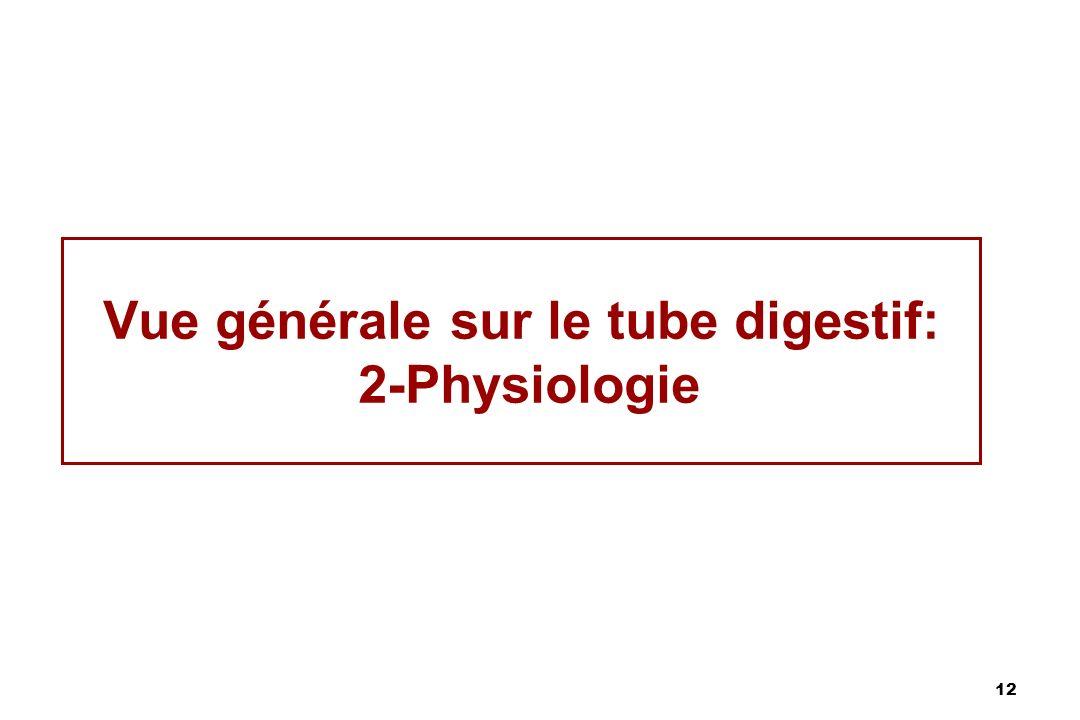 12 Vue générale sur le tube digestif: 2-Physiologie