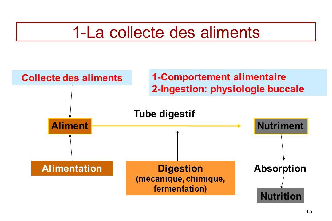 15 1-La collecte des aliments Collecte des aliments Aliment Alimentation Tube digestif Nutriment Digestion (mécanique, chimique, fermentation) Absorpt