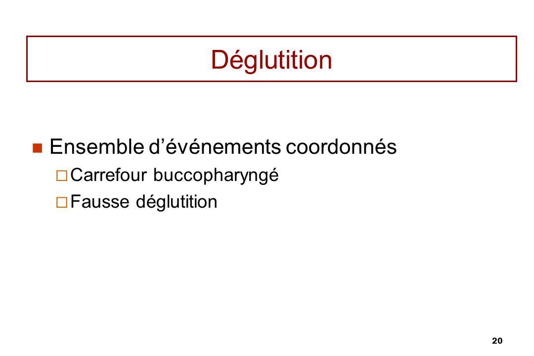 20 Déglutition Ensemble dévénements coordonnés Carrefour buccopharyngé Fausse déglutition