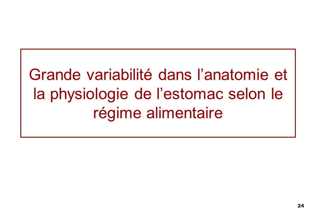 24 Grande variabilité dans lanatomie et la physiologie de lestomac selon le régime alimentaire